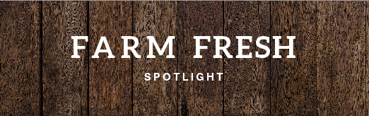 Farm Fresh Spotlight on Wood